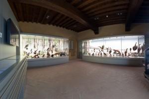 museo-castello-montecuccolo-pavullo-frignano