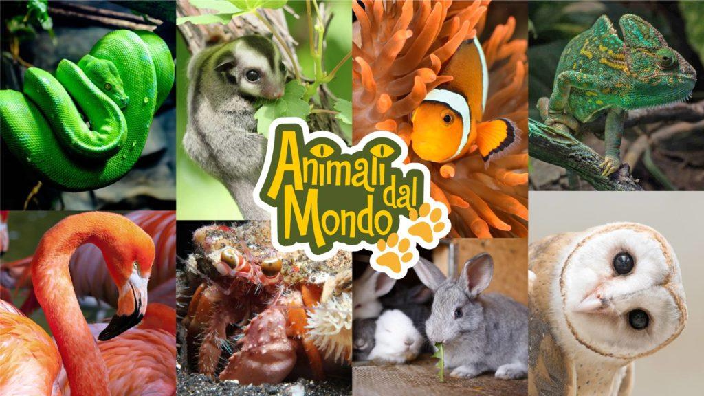animali-mondo-verdi-passioni
